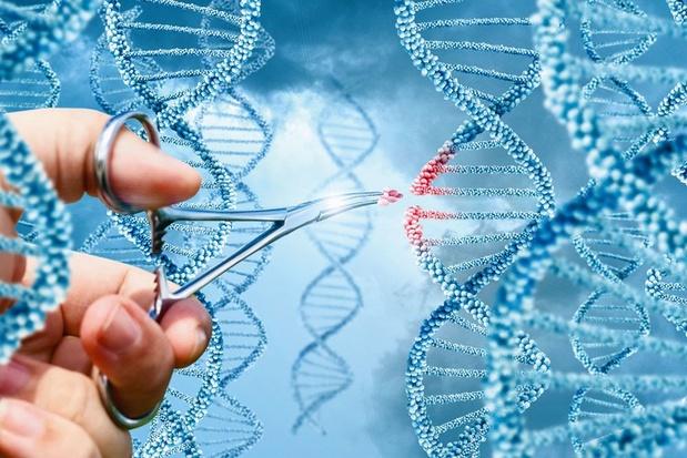 Le Nobel de chimie à deux chirurgiennes des gènes