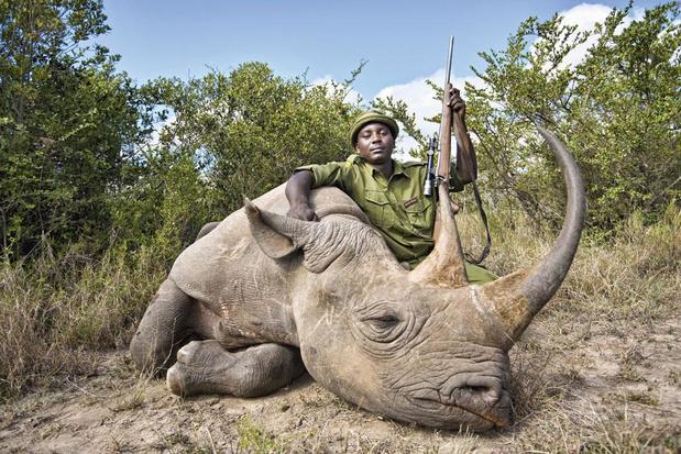 Et si... le trafic d'animaux sauvages prenait fin?