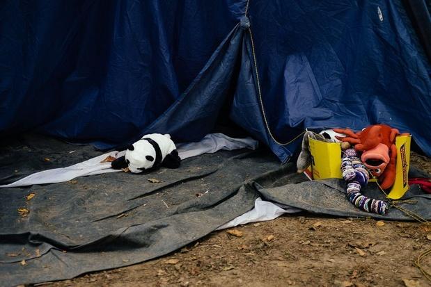 La Sûreté de l'État a repéré 80 demandeurs d'asile l'an dernier