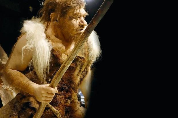 Les Néandertaliens ont disparu de la Belgique bien avant la date présumée