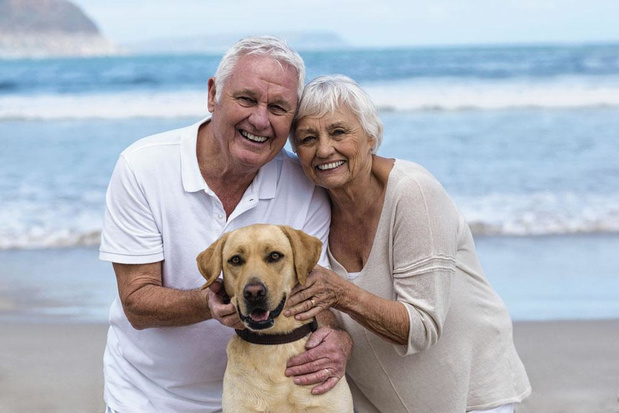 Hond verbetert prognose na hartinfarct