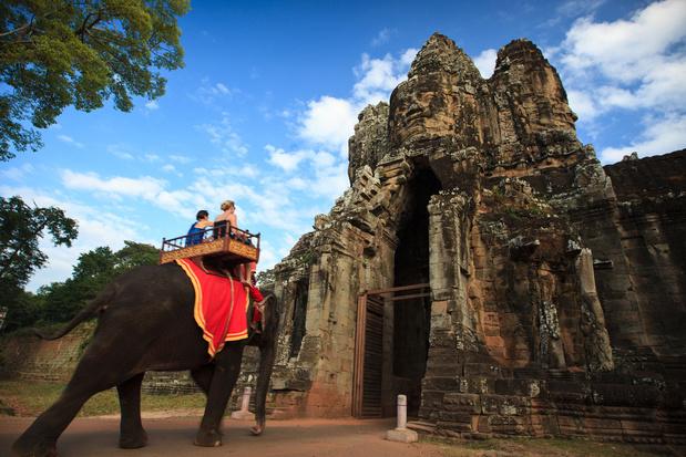 Olifantenritjes worden verboden in Angkor Wat in Cambodja
