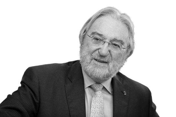 Herman De Croo - Vlaams Parlementslid