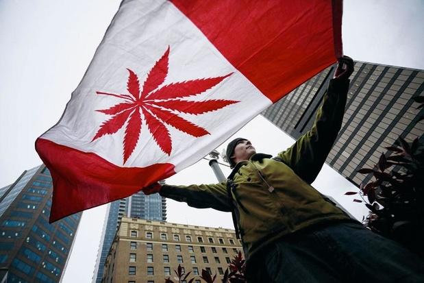 Au Canada, la légalisation du cannabis n'a pas éradiqué le marché noir