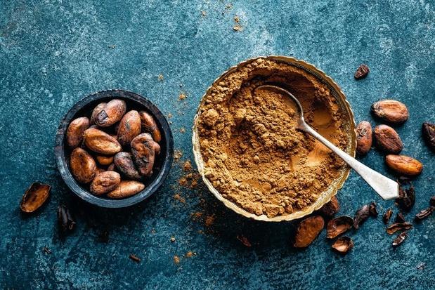 Le cacao, nouvel or brun des paysans haïtiens ?
