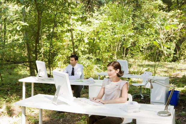 Oostends bedrijf blaast boslucht in kantoor