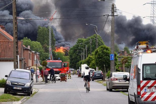 Vliegenplaag teistert afgebrande bedrijfssite in Bavikhove, stad belooft maatregelen