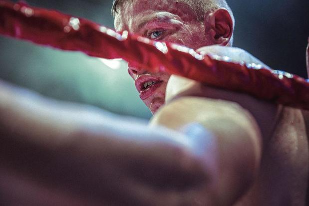 Reprise de la boxe en Belgique