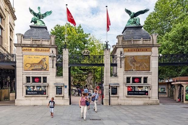 Chute drastique du nombre de visiteurs des zoos d'Anvers et de Planckendael