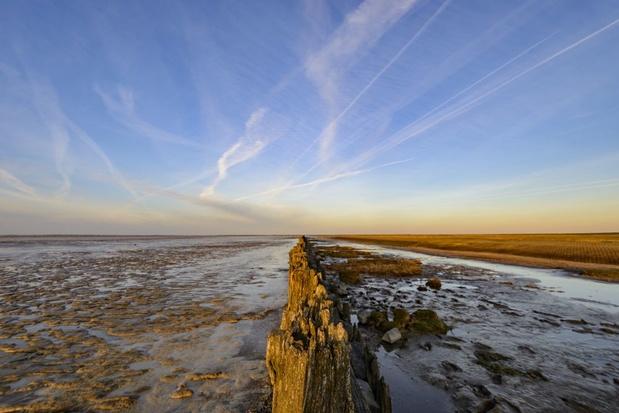 Wrak van oudste zeevarende schip in de Waddenzee gevonden
