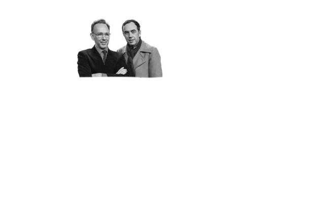 Stephen en David Dewaele Muzikanten