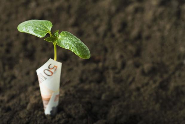 Beleggen met een positieve impact: van de energietransitie tot microfinanciering