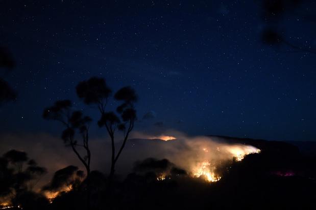 Tien procent van de nationale parken in Australische New South Wales afgebrand