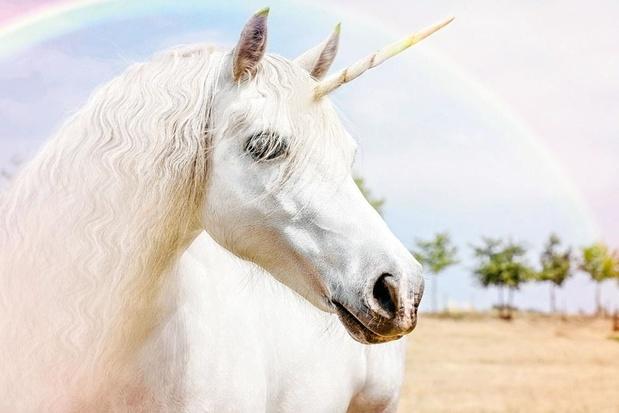 Van start-up naar unicorn: de snelkookpan van Silicon Valley