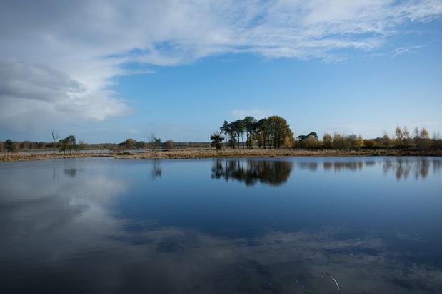 Natuurreservaat Turnhouts Vennengebied wordt 73 hectare groter