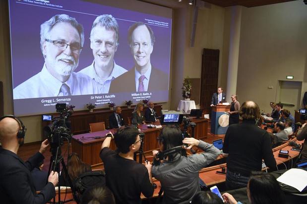 Le Nobel de médecine attribué à deux Américains et un Britannique