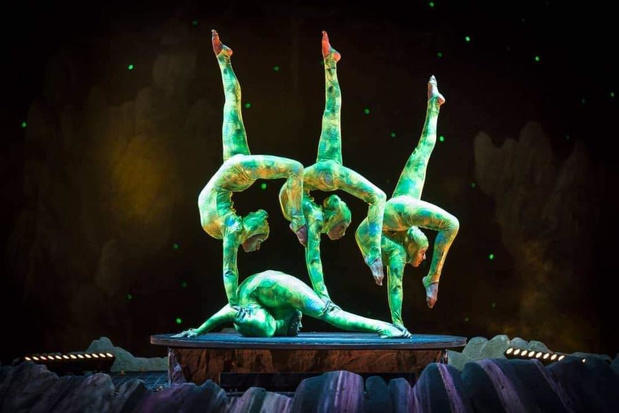 Piraten en acrobaten bij Circus Boxtalino