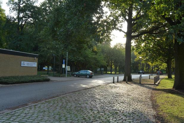 Gemeente Wielsbeke wil nieuwe bomen planten op domein Hernieuwenburg
