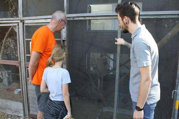 Vogelopvangcentrum Oostende zet de deuren open voor het publiek