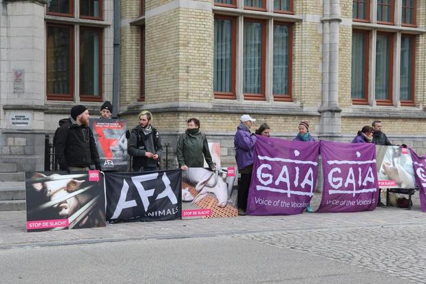 Dierenrechtenorganisaties houden stille wake bij proces tegen Tielts slachthuis