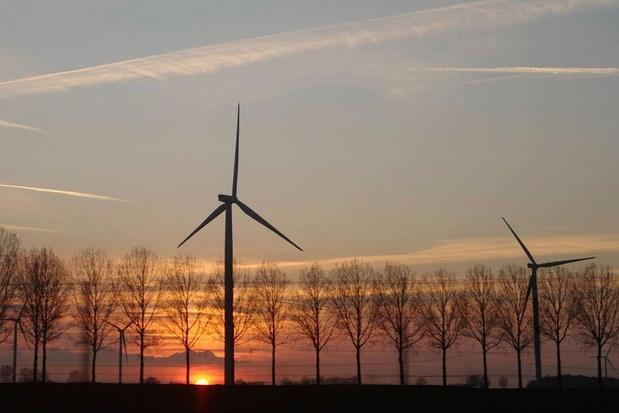 'Hoge molens vangen veel wind: laat gemeenten mee beslissen'
