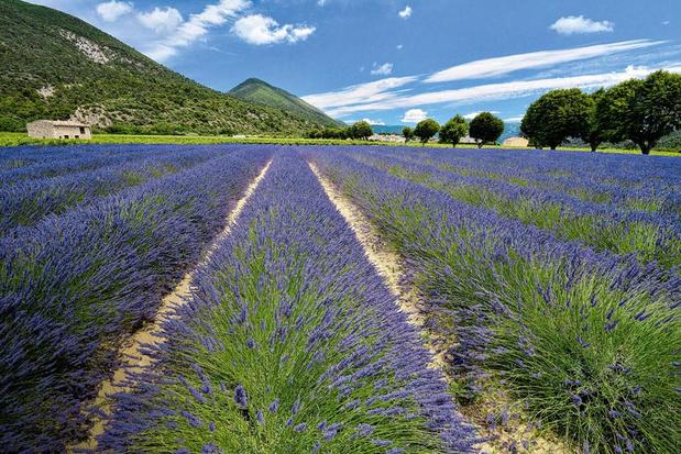 Aux portes de la Provence