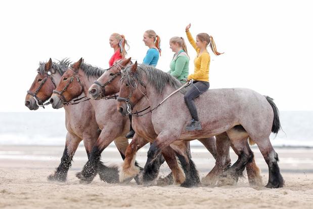 Landbouwweekend 'Boer zkt strand' op 14 en 15 september in Middelkerke