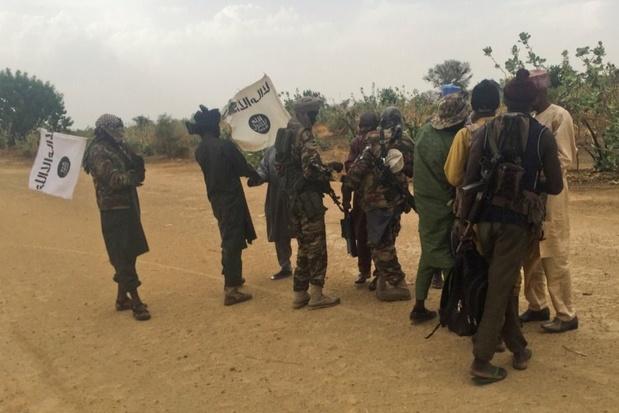 Minstens 75 terroristen van Boko Haram omgebracht bij twee militaire operaties