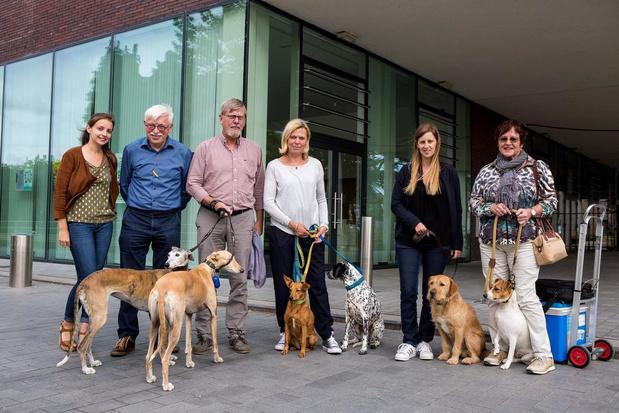 Brugge krijgt er een hondenloopweide bij