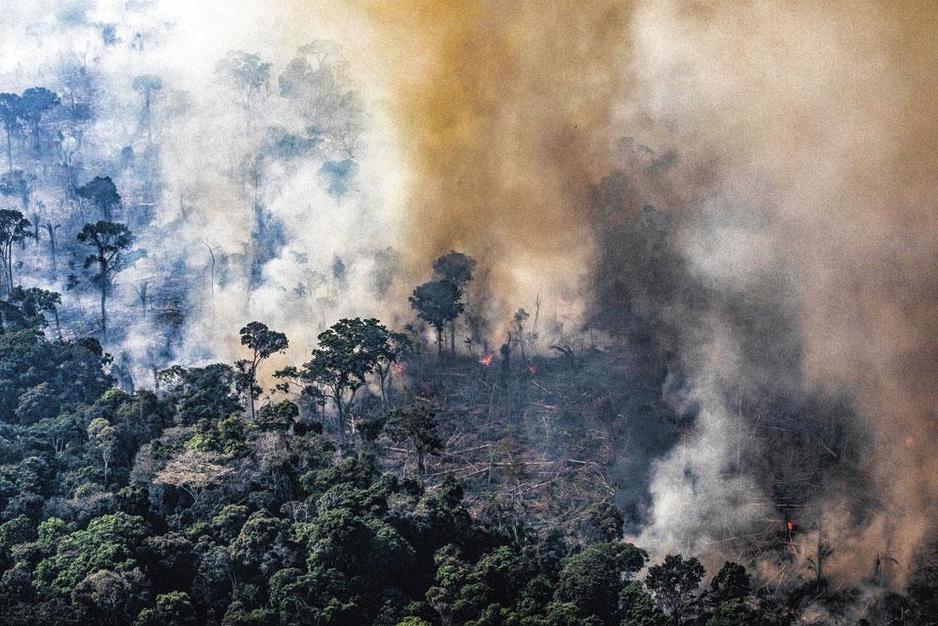 Amazonewoud: kan de wereld ingrijpen tegen president Bolsonaro?