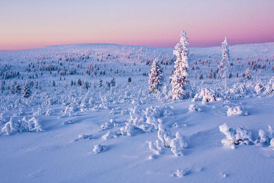 Expeditie Lapland: 'A natural high, een trance in de sneeuw'