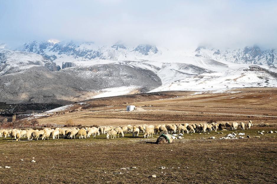 Te voet door het Turkse Taurusgebergte: op stil avontuur langs besneeuwde toppen