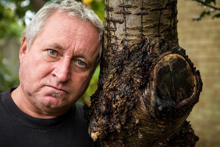 Waarom Alain zijn huis - en veel meer - riskeert voor enkele bomen