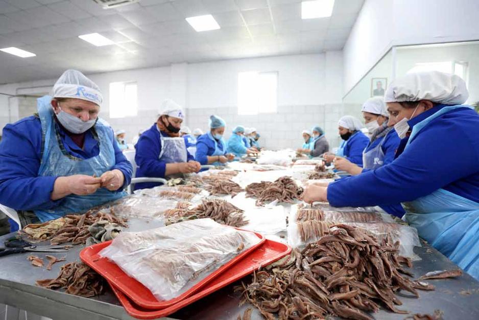 Une surréaliste usine d'anchois dans d'anciens bunkers communistes (en images)