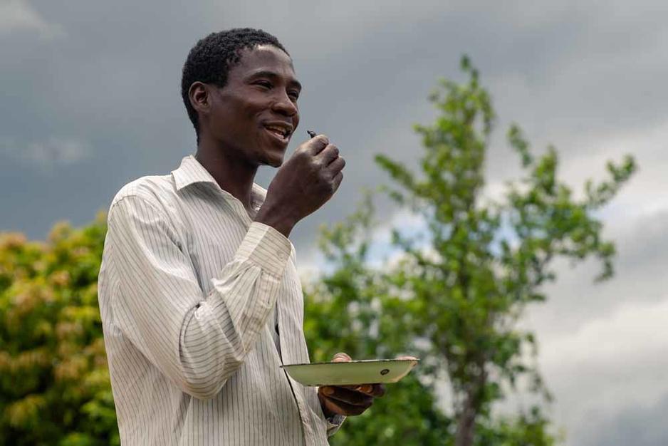 Le scarabée de Noël : une friandise au Zimbabwe (en images)