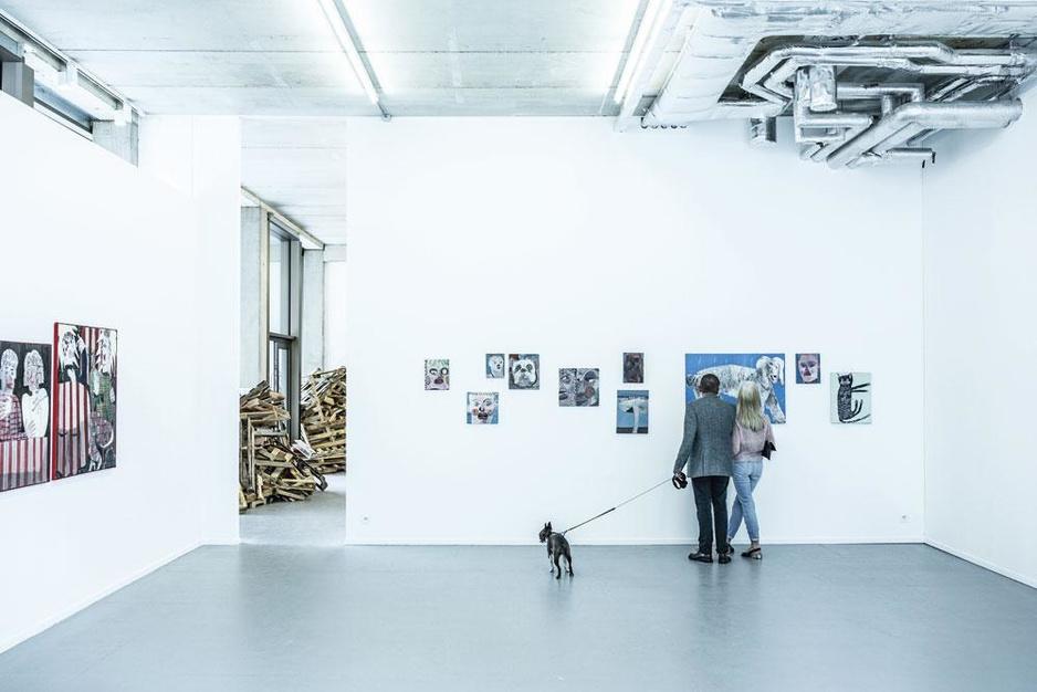 Kunst afbetalen in termijnen: Vlaanderen lanceert de renteloze kunstlening