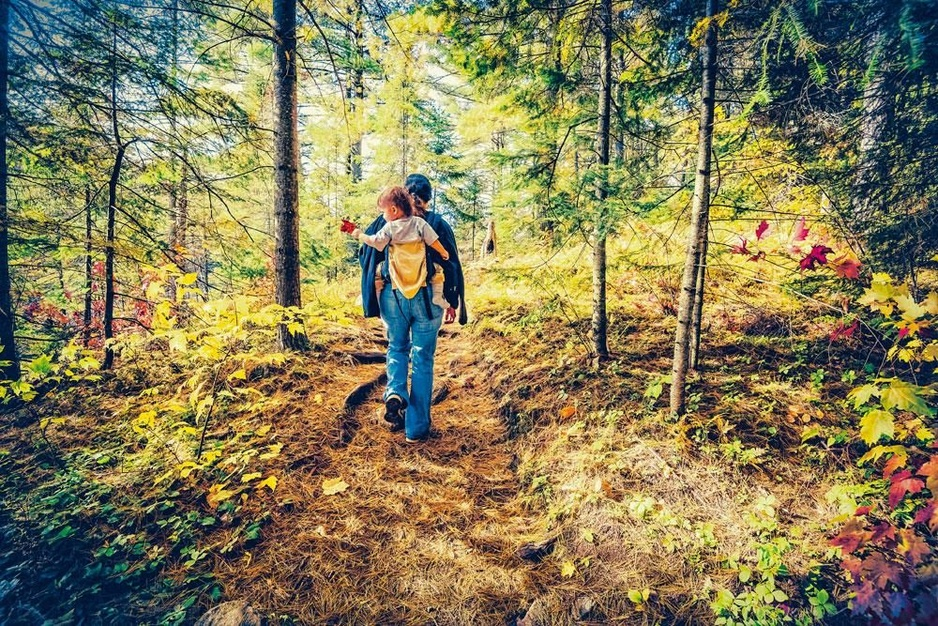 Gewoon wandelen is topsport: minder kanker, minder herval