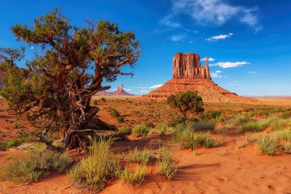 Dit zijn de mooiste natuurlijke plekken op aarde