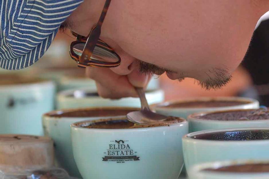 Le Geisha du Panama: le café le plus cher du monde