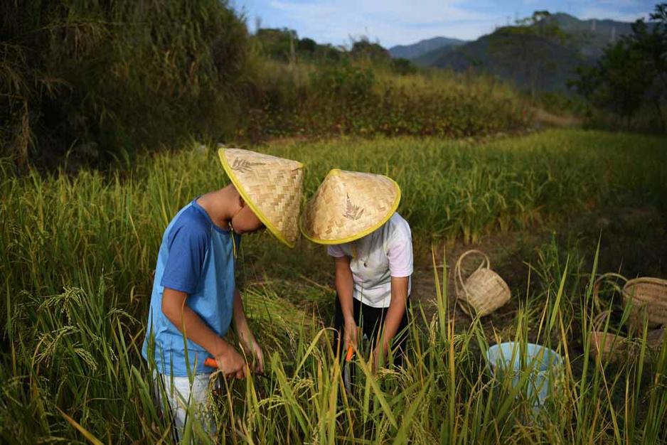 En Chine, fuir la ville pour retrouver une vie plus simple (en images)