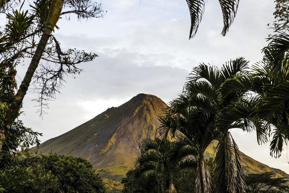Le Costa Rica, un paradis végétal bien protégé