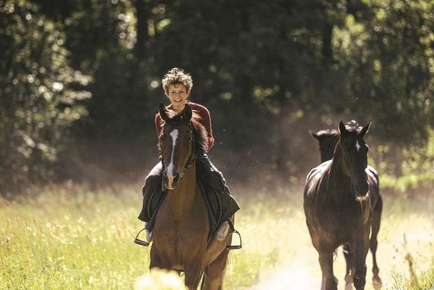 Out Stealing Horses: le poids du passé