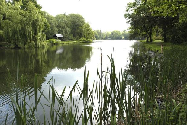 Vijf Antwerpse parken winnen internationale prijs voor duurzaam beheer