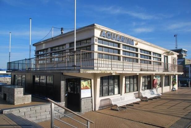 Oostends Noordzeeaquarium wordt gesloten voor publiek