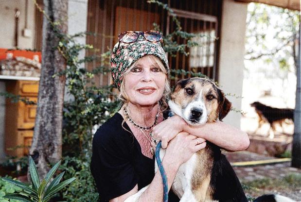 Leur vie est un feuilleton : Brigitte Bardot, l'âme blessée