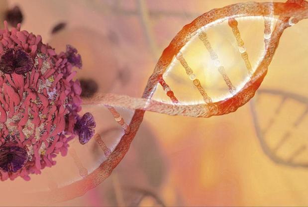 Op naar een nieuwe generatie CAR-T-cellen