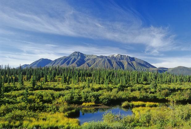 Ontdek Yukon, de Canadese provincie van goudzoekers en sledehonden