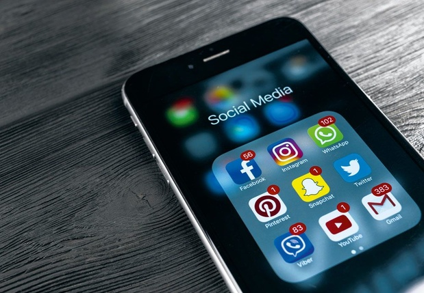 """""""Les réseaux sociaux sont-ils un problème pour la démocratie ? Non, mais la relation est compliquée"""""""