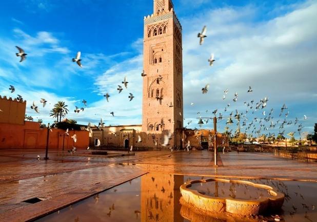 Brussels Airlines waagt zich aan 'afgeraden' zonbestemmingen in Egypte en Marokko
