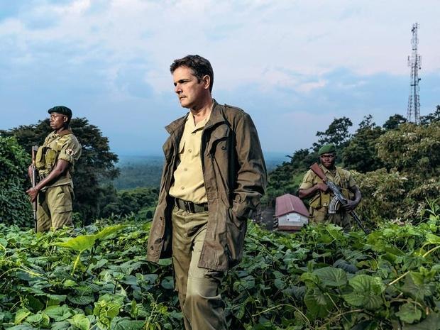 """Emmanuel de Merode, directeur du parc national des Virunga: """"Nous apportons la lumière au bout du tunnel"""""""